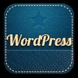 你发现利用WordPress疯狂创富月入过万的商机了吗?